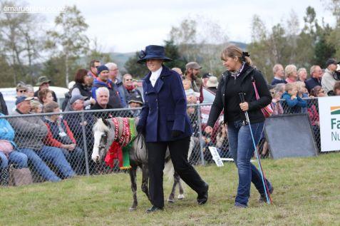 Mackenzie Show Grand Parade 0100
