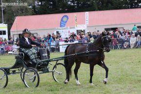 Mackenzie Show Grand Parade 0136