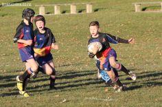 Scone Junior Rugby 0042