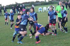Scone Junior Rugby 0126