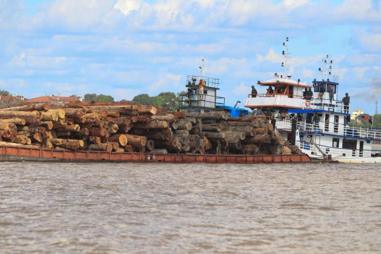 illegal-logs-tocantins-photo-by-semas