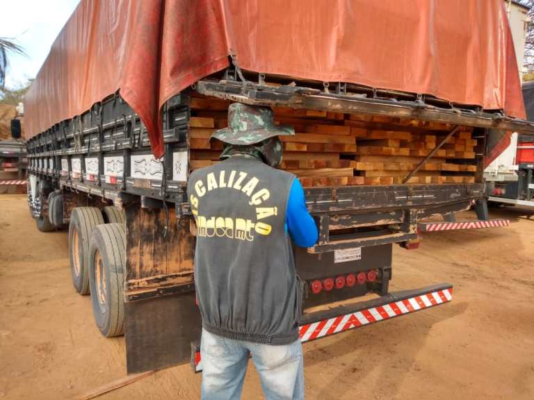 illegal-wood-mato-grosso-photo-by-prf