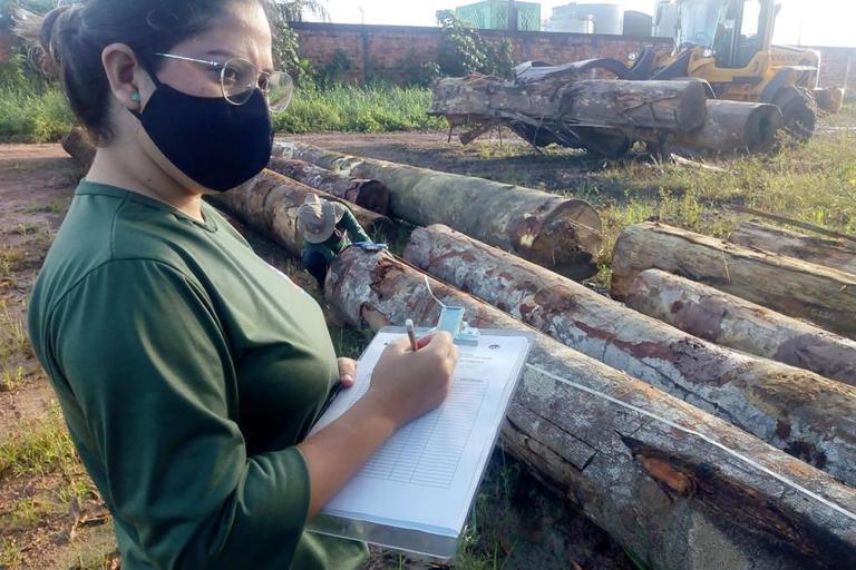 semas-tallies-illegal-logs-para-photo-by-semas