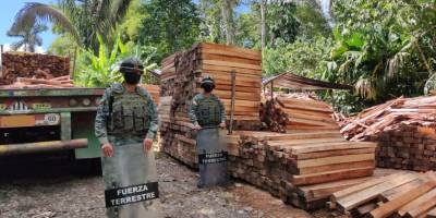 Ecuador Armed Forces seize Balsa wood.