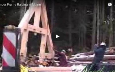 Beautiful Timber Frame Raising