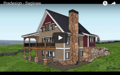 Saginaw 3D Fly-Through Video
