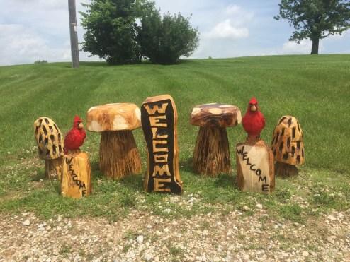 cardinals, toadstools, morel mushrooms, welcome sign