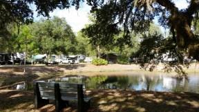 timberlane-rv-park-resort-bradenton-fl-20