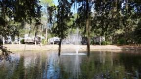 timberlane-rv-park-resort-bradenton-fl-21