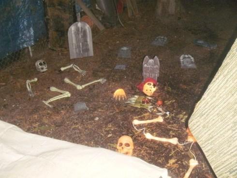 20111029_HalloweenParty_11