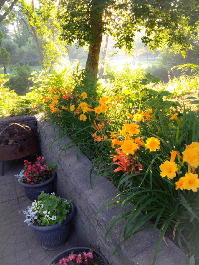 patio-garden-shot