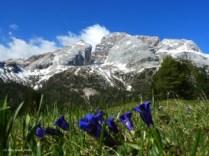 4.-Italian-Dolomites-300x225