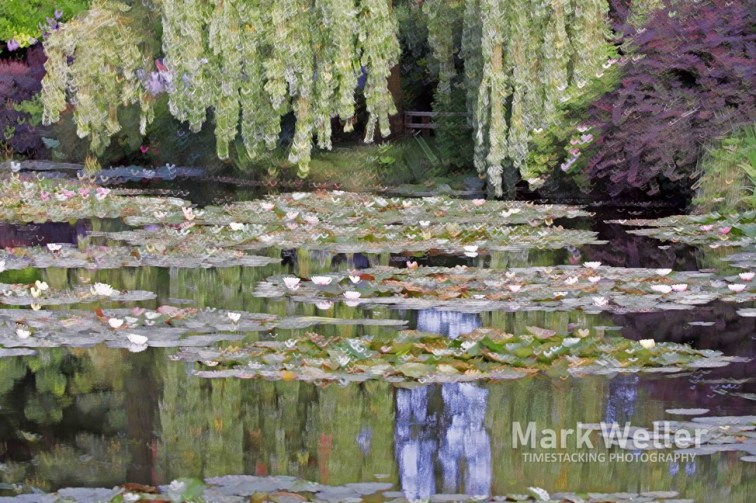 Timestack photography of impressionism water reflections lillies
