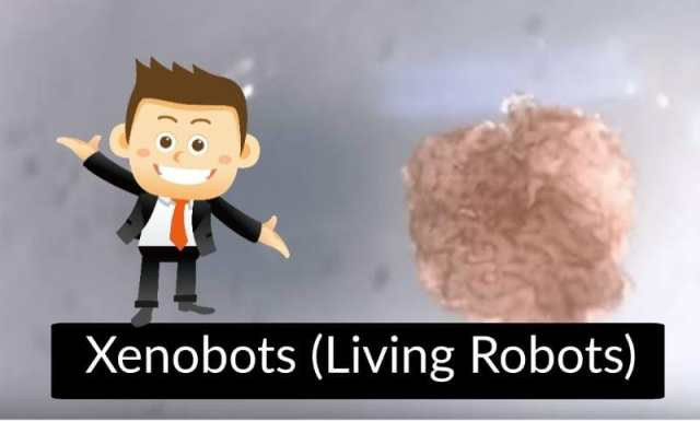 Upcoming Future Technology in India - Xenobots (Living Robots)