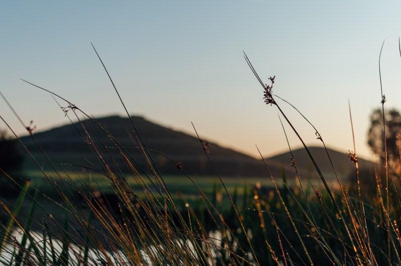 Sunrise at Northala Fields