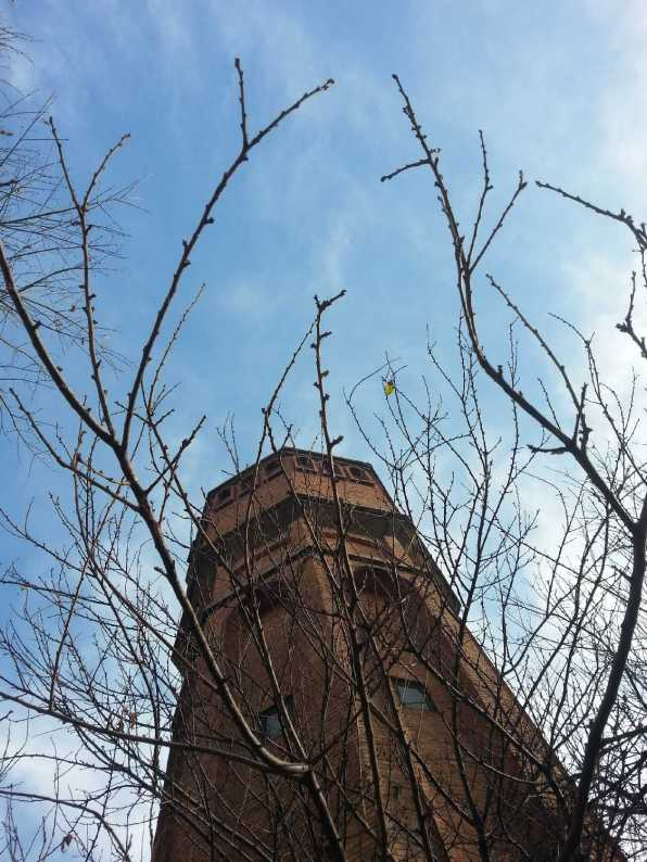 Water-tower-03