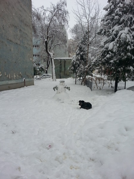 Snowman-and-dog-01