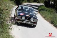 41 Hellenic Regularity Rally 2017