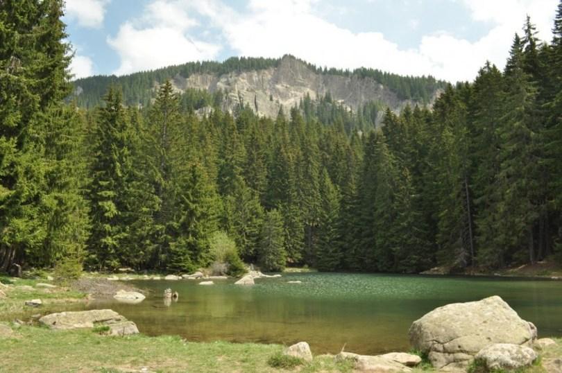 Тревистото езеро