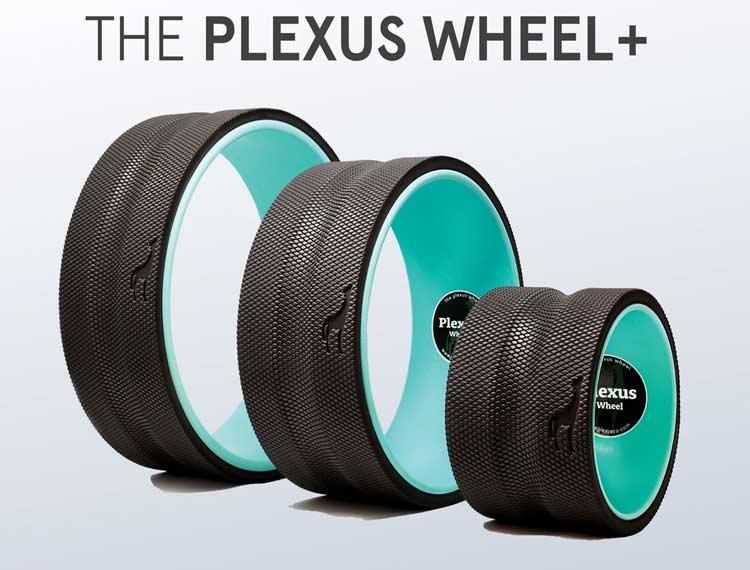 Plexus Wheel The Simplest Back Pain Relief