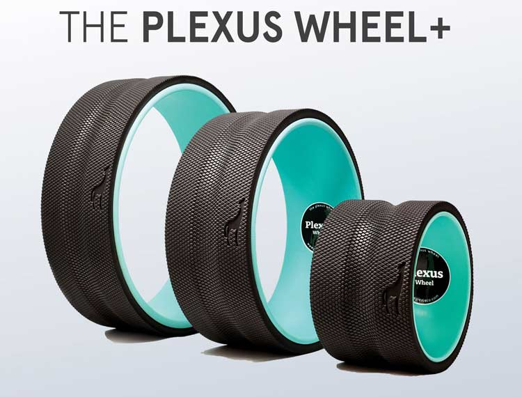 Plexus Wheel The Simplest Back Pain Relief