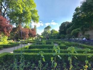 Dutch garden, evergreen, hedges, holland garden, London