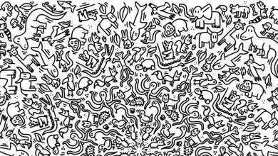 Header dibujos para pintar