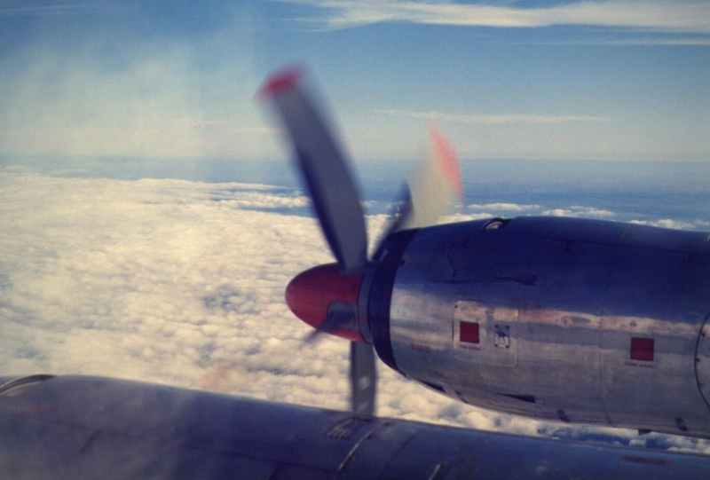 gray and red airplane flying under blue sky