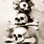Skulls and bones decorations