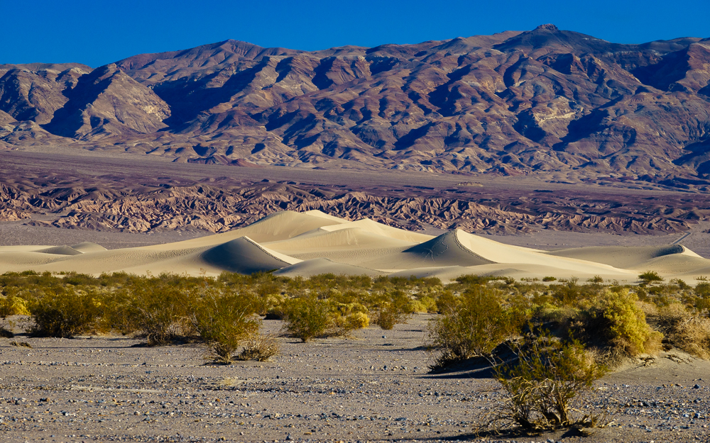 The Mesquite Dunes of Death Valley.