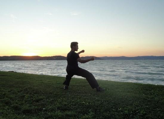 Alternative Sichtweisen der Kampfkunst