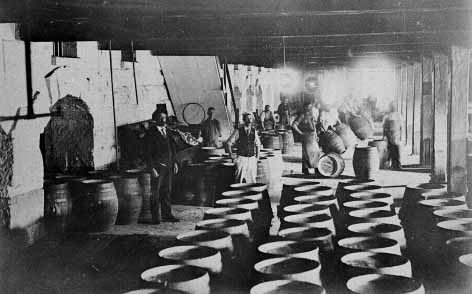 coopers kent brewery sydney