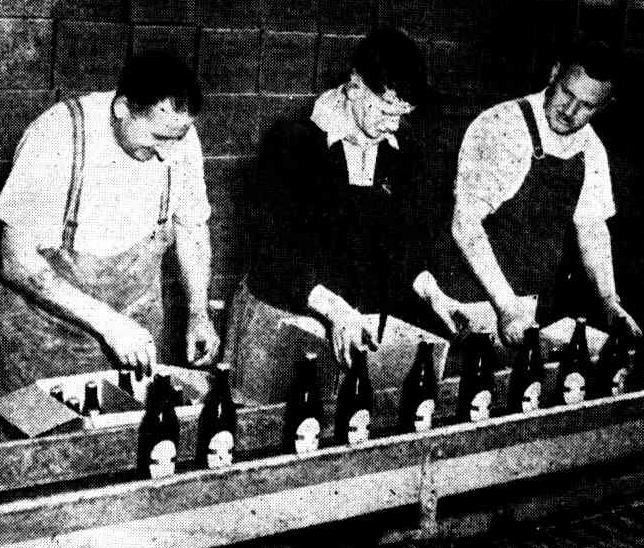 tasmanian brewery 1953