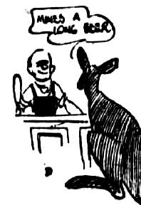 kangaroo bar