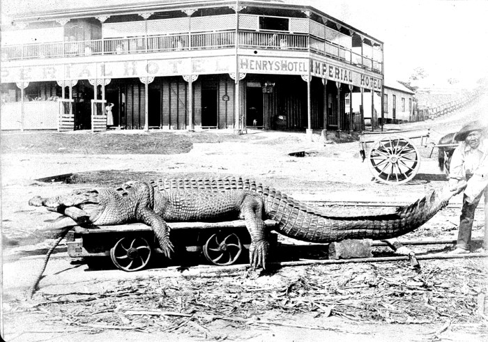 imperial hotel innisfail 1902