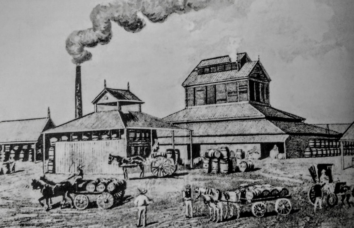 Robert Tooth and Brisbane's Bulimba Brewery