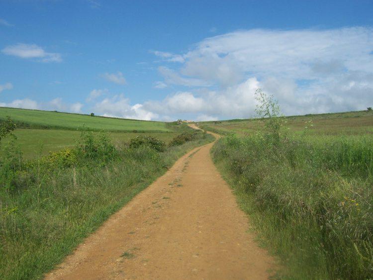 El Camino going off into the horizon