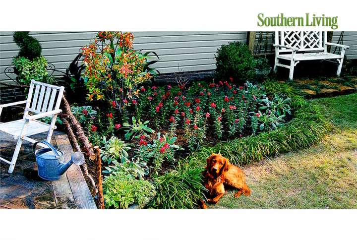 Easy, No Mow Lawns - Southern Living on No Mow Backyard Ideas id=85699
