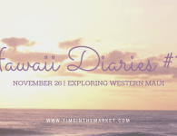 Hawaii Diaries #12 – Exploring Lahaina and Western Maui