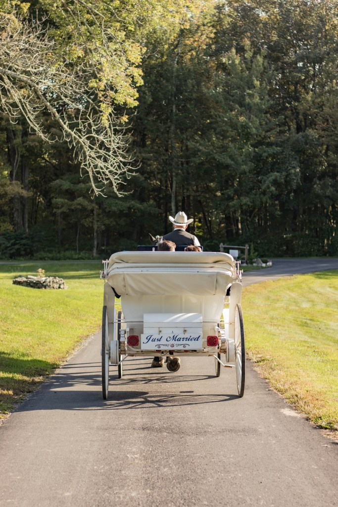 The cost of a wedding includes the venue. Ours happened to include horse carriage rides for us and our guests!
