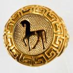 anello giallo cavallo giallo