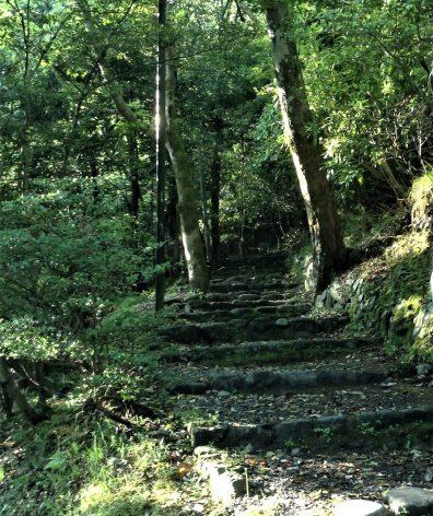 Exploring the surrounding hills in Arashiyama, Kyoto