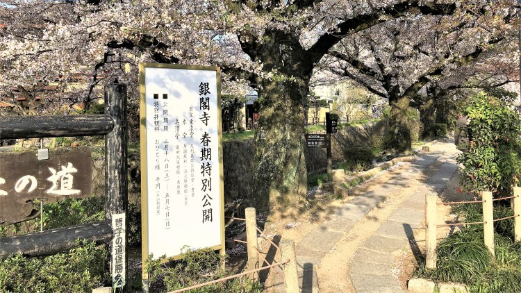 Philosopher's Path in Kyoto begins with a stone path in pleasant surroundings.