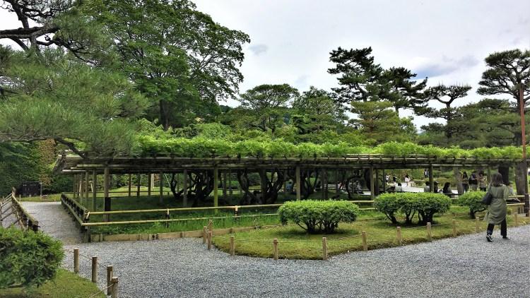 Byodoin Temple, Uji, Kyoto: Resting Area