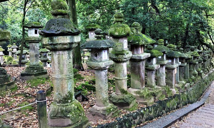Stone lanterns line the path in Nara Park, Nara