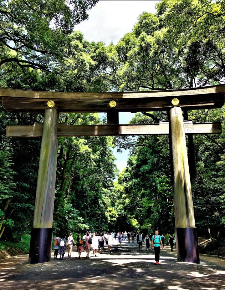 The 12 meter (40-foot) high Torii gate which marks the entrance to the Meiji Shrine in Tokyo.