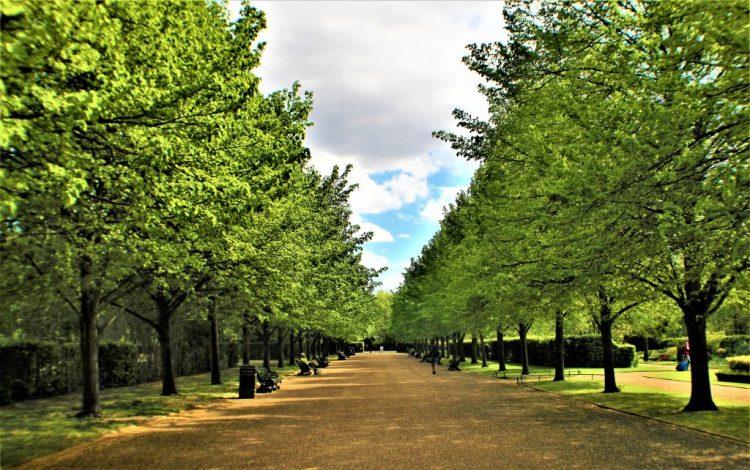 Regent's Park and Primrose Hill