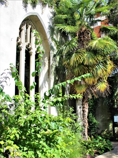 Palm trees add a tropical feel to the garden at St Dunstan in the East.