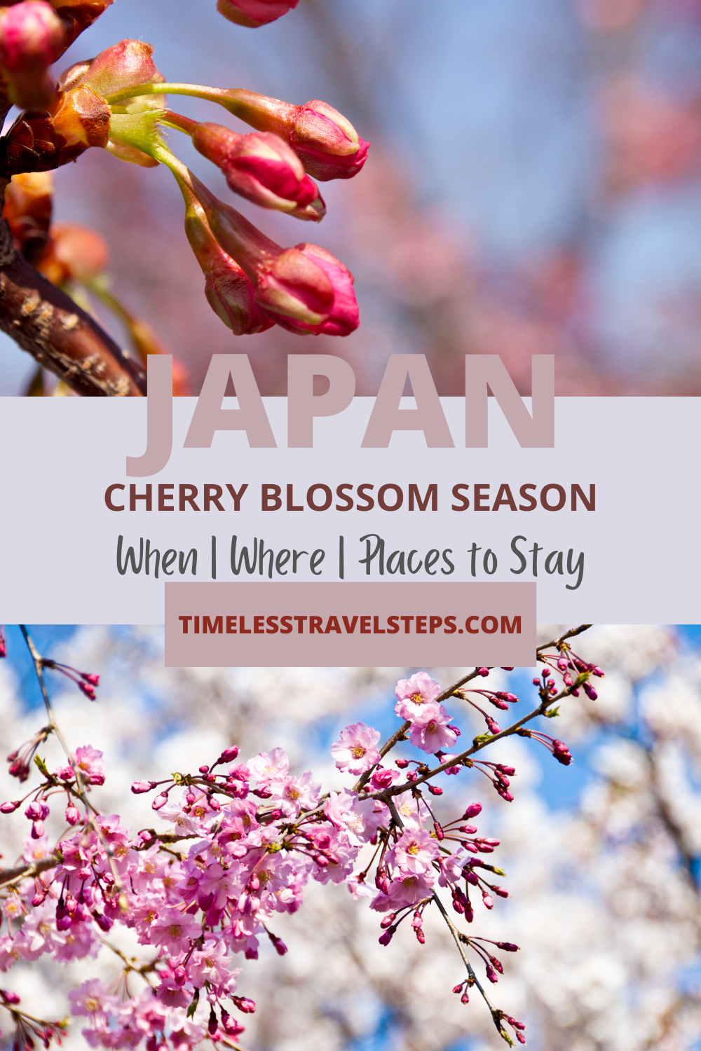 Cherry blossom season in Japan - A simple guide to where, when and what you need to know when planning your Hanami vacation. via @GGeorgina_mytimelessfootsteps/