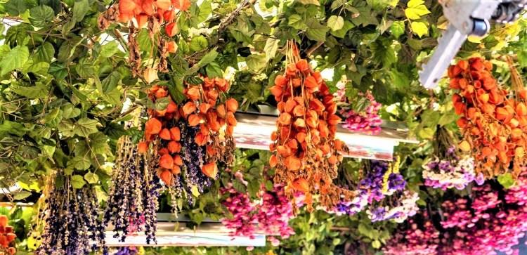 Amsterdam in a nutshell | Flower market